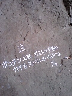 20081118132628